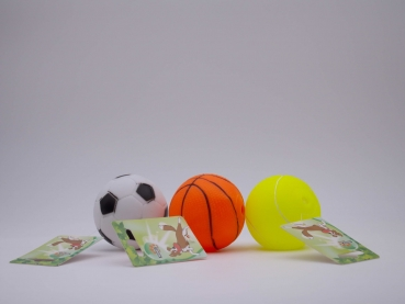 REINEX PET'S WORLD Ball-Sortiment Sport 3-fach sortiert